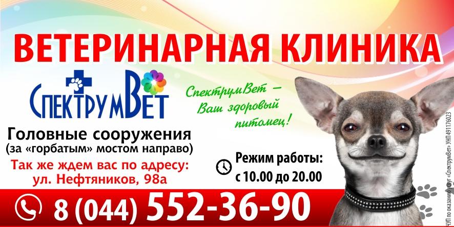 Ветеринарная клиника «СпектрумВет»